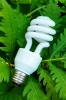 Energy efficiency movement 'growing in the US'