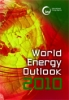 WEO-2010 Predicts Future Energy Patterns and Actions?