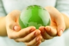 Energy Efficiency and Low Carbon to Benefit SMEs