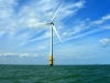 Report Calls for UK to Forget Renewable Target
